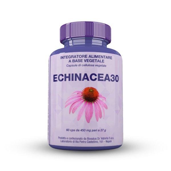 echinacea30